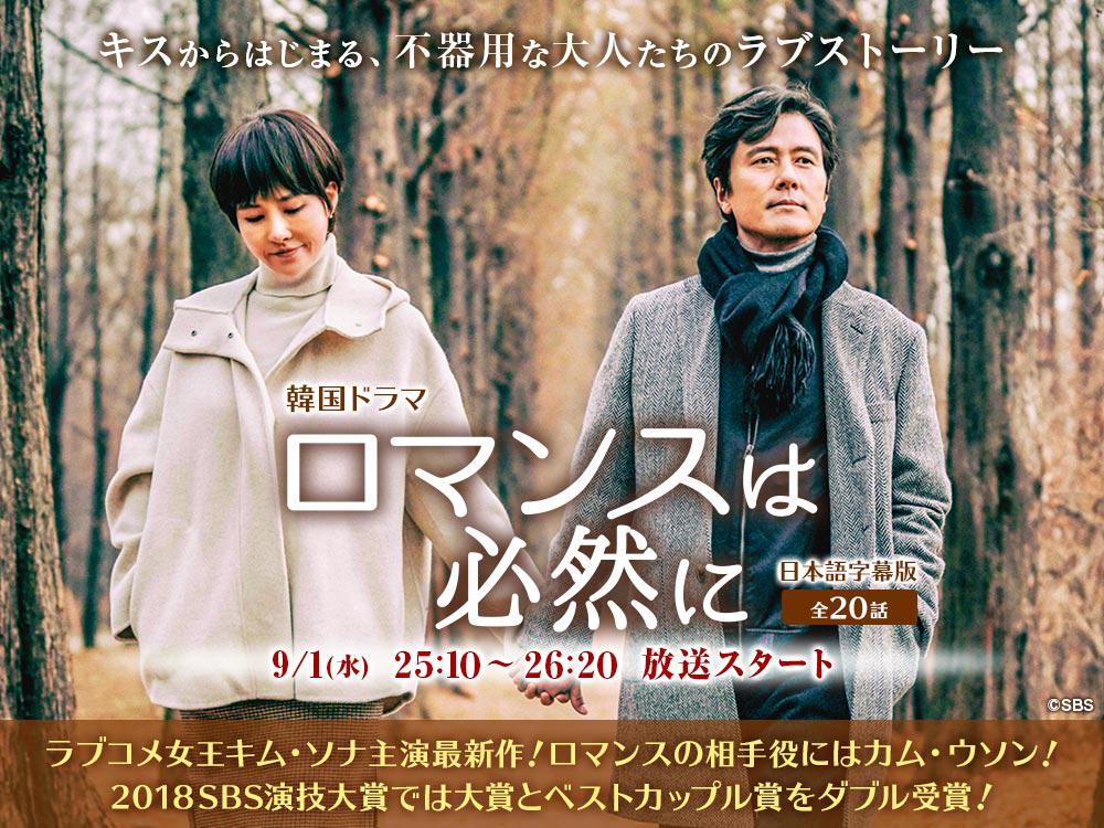 韓国ドラマ『ロマンスは必然に』日本語字幕版(全20話)